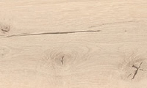 Special edition NKL31 Plank 1-Strip Glacier Oak textured